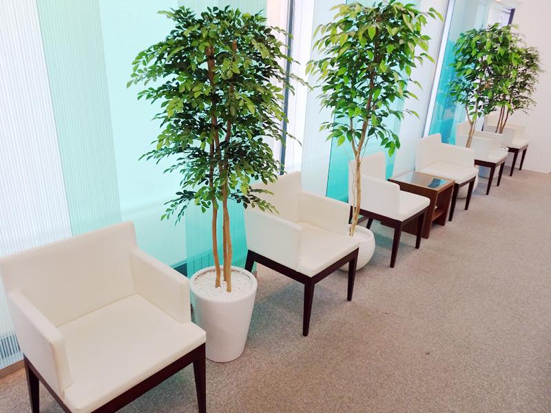 落ち着けるスペースで診療をお待ちいただきます。